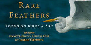 Rare Feathers: Poems on Birds & Art