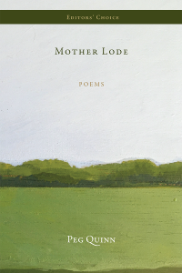 Mother Lode cover