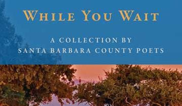 While You Wait: A Collection by Santa Barbara County Poets